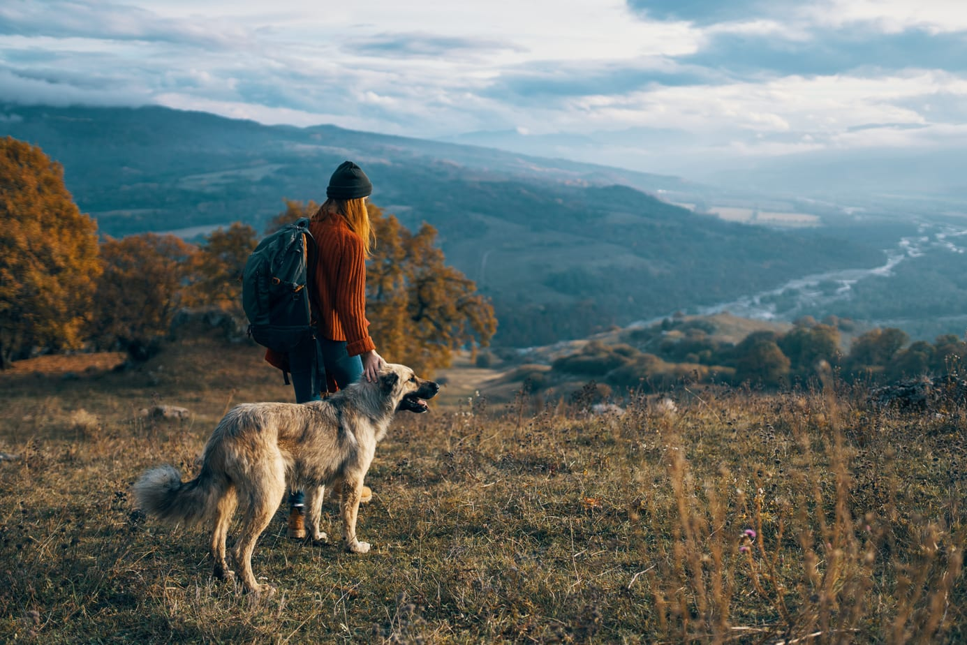 lady and her shepherd dog looking out over the horizon, enjoying their hiking with your dog