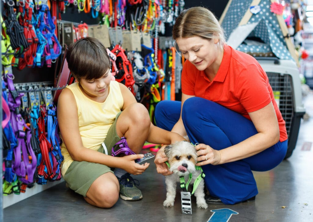 small puppy in a pet store exploring some new harnesses, puppy looks uncomfortable, but that could be the harness, this is a whole new world of experiences for her and is definitely classed as socialization!