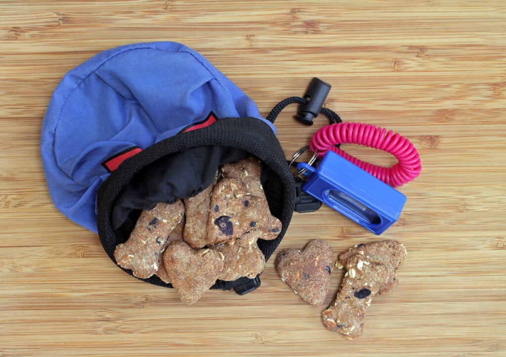 a treat pouch and clicker, all ready for puppy training! What do you think? Are these high value enough?