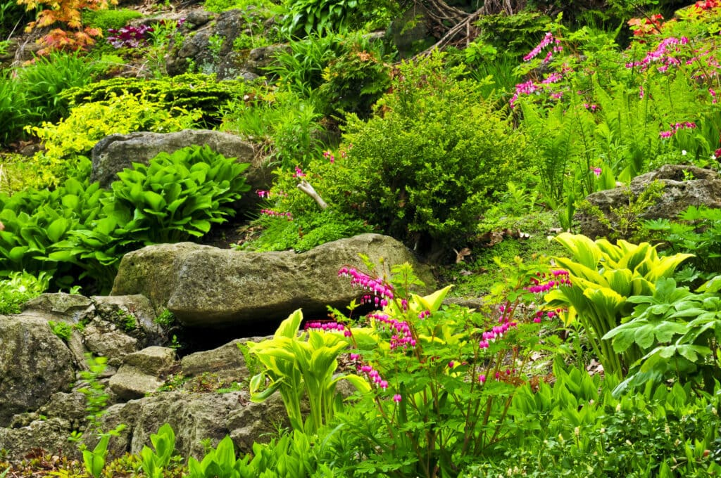 a very rocky garden can be tough for a physical fence