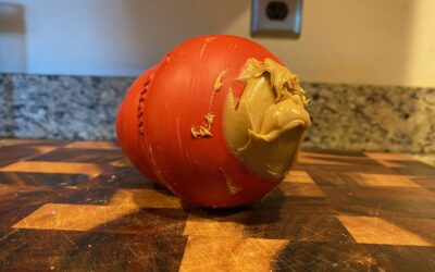 How To Use A Kong For Your Puppy (Including 46 Delicious Filling Suggestions!)