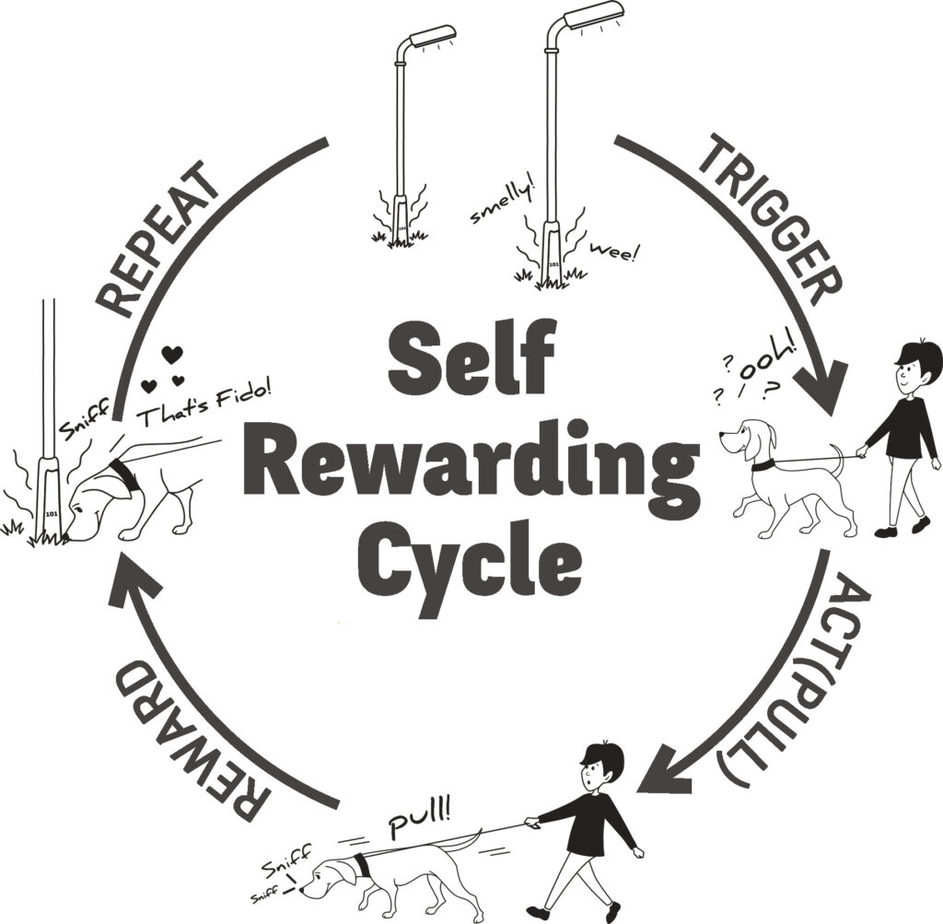 Self rewarding cycle - pulling to a smell